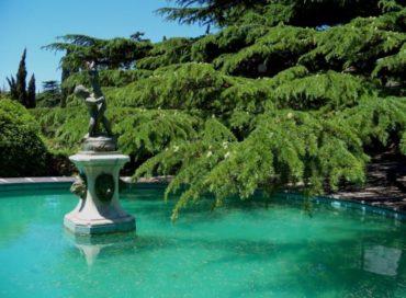 Форосский парк один из красивых в Крыму